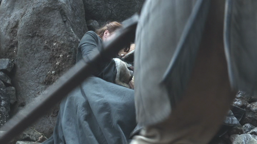 Game of thrones - wolf and lion00202