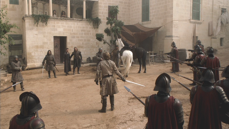 Game of thrones - wolf and lion00182