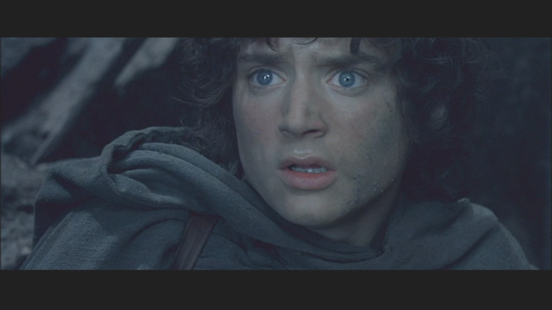 Fellowship of the ring00008